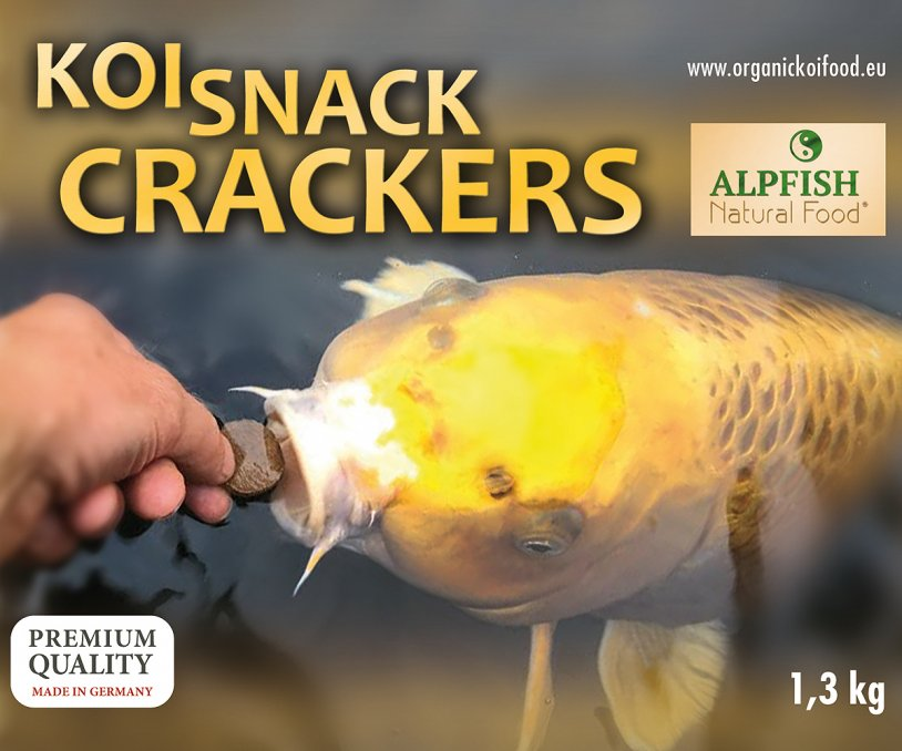 Koi Snack Crackers 6 x 3,5 litri (7,8kg) gallegiante - NEW